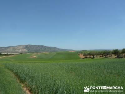 Ruta de las Caras - Buendía (Embalse de Buendía); senderismo sierra huelva